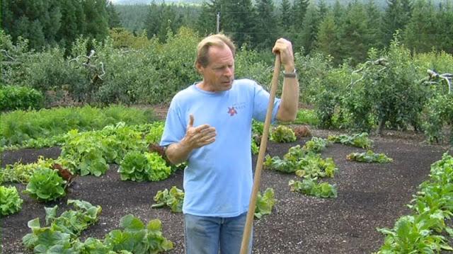 A Back To Eden Review The Survival Gardener