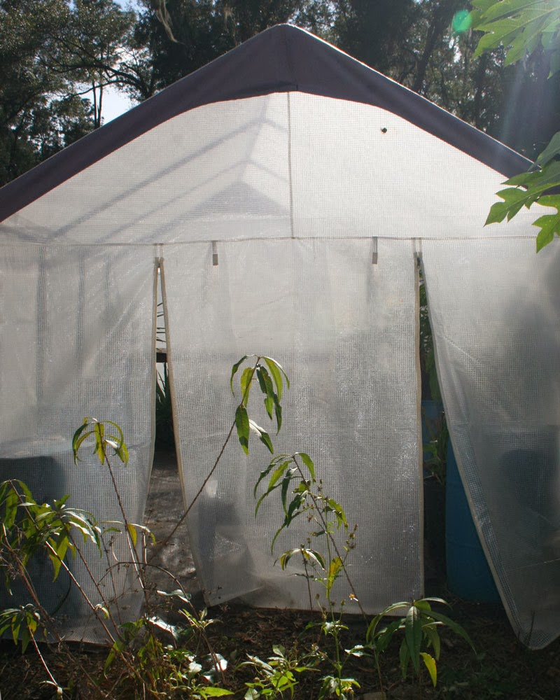 Perfect Greenhouse