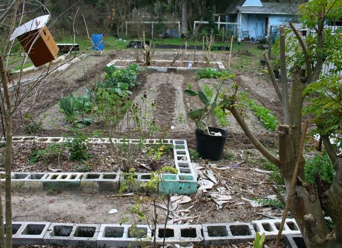 GardensFebruary2015-4