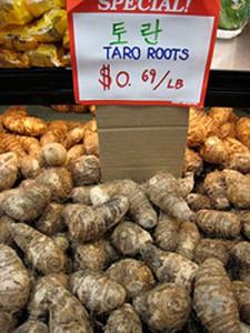 Taro_Roots