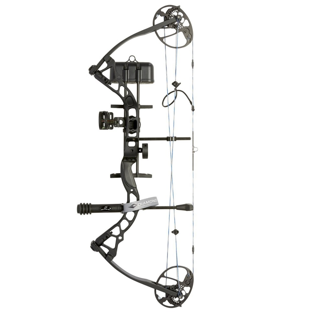 A well-ranked modern compound bow.