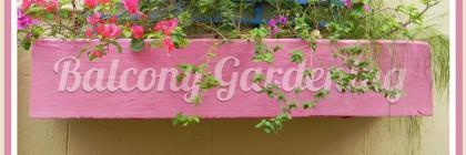 Balcony_Gardening_Balcony_Garden