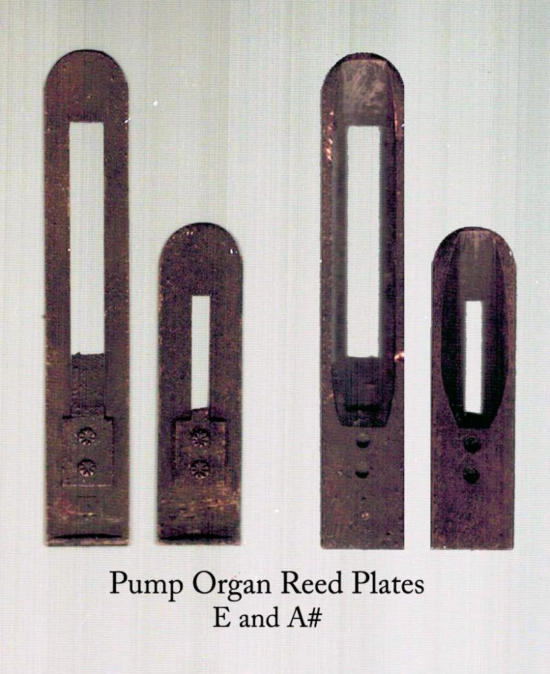 Pump_Organ_Reed_Plants_MetalDetecting