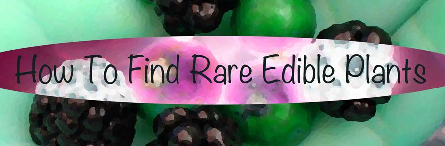 rare edible plants title