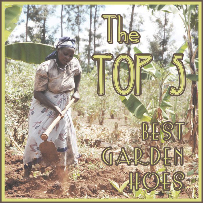 The top 5 best garden hoes the survival gardener for Top gardening tools 2016