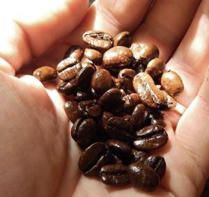 Driftwood-coffee-company-midnight-drift