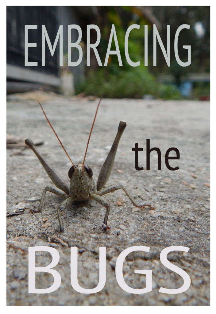 Embracing_The_Bugs