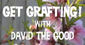 Get Grafting!