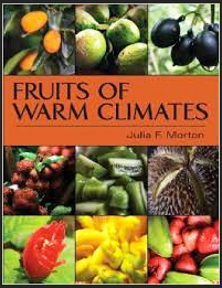 Fruits_Of_Warm_Climates