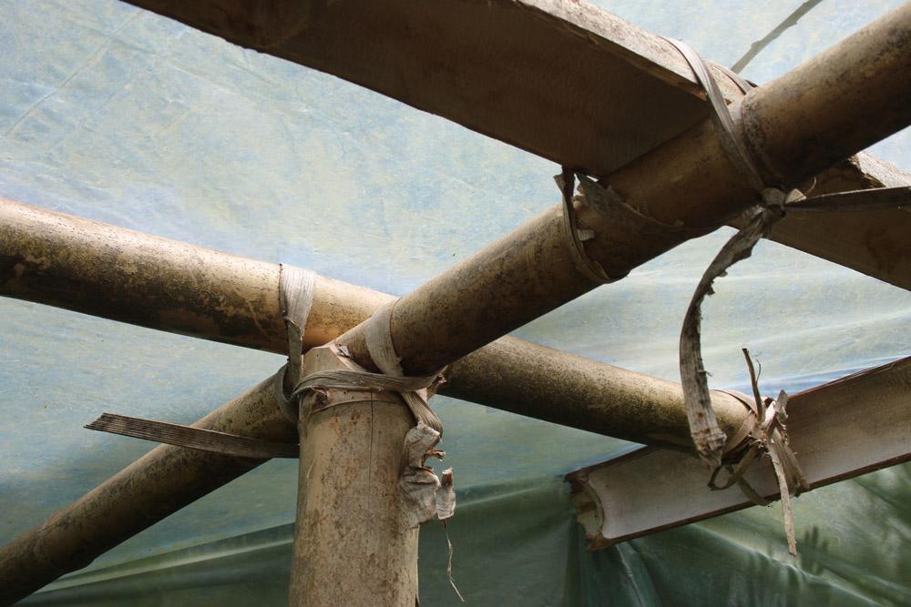 Bamboo-greenhouse