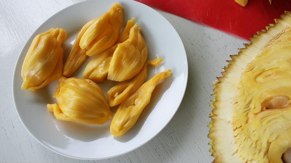 sprout jackfruit seed