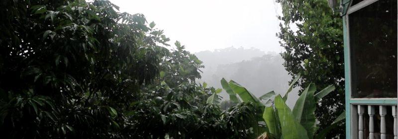falling-rain