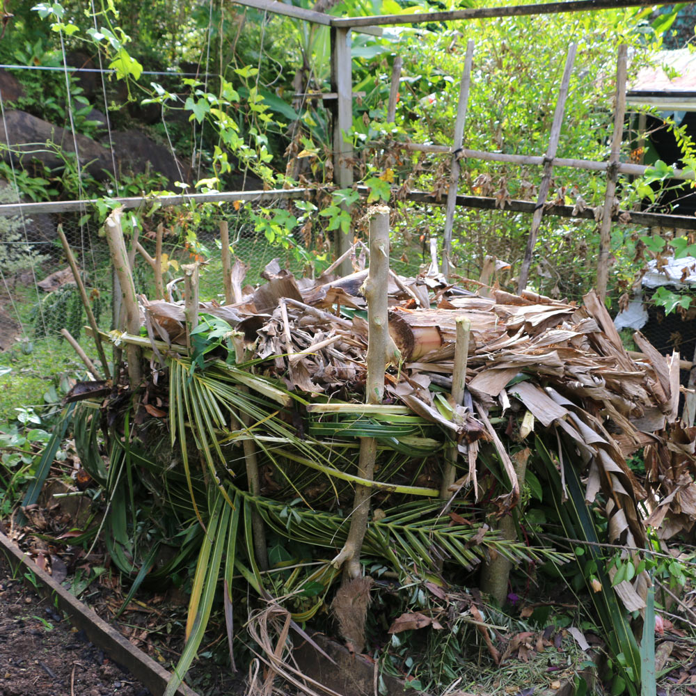 simple compost pile with no infrastructure