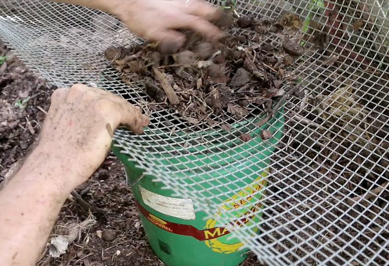 Back To Eden Chicken Compost Sifting