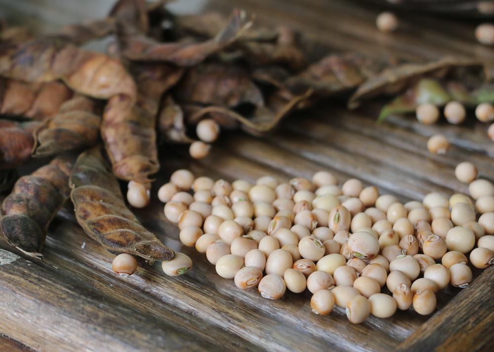dry pigeon peas