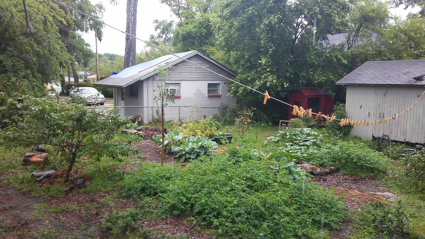 florida gardening archives the survival gardener