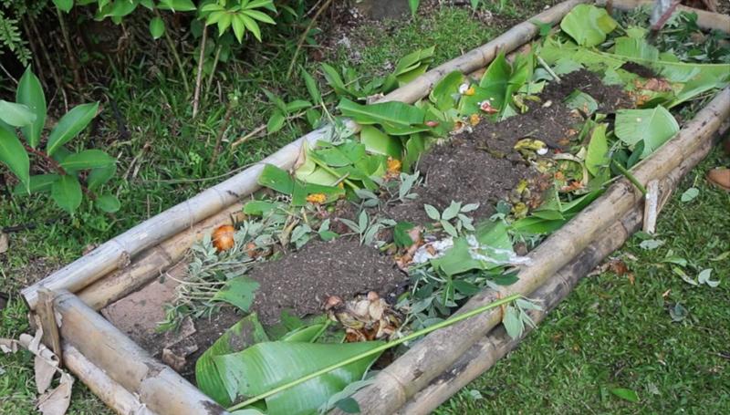 lasagna-gardening-kitchen-scraps-chicken-manure