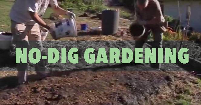no dig gardening demonstration
