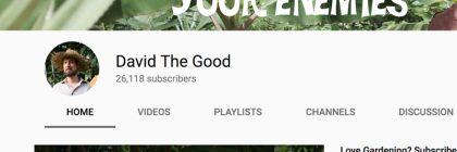 youtube-david-the-good