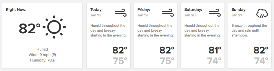 new-city-weather