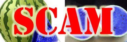 blue-watermelon-hoax-scam