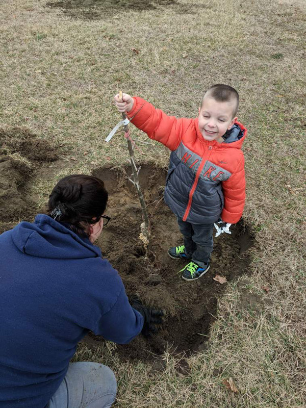 planting-bare-root-trees-steph-2