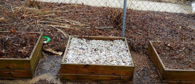 shredded-paper-mulch