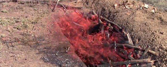 biochar-burn