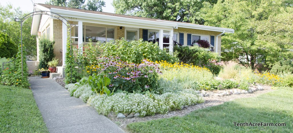 front yard edible landscaping amy stross