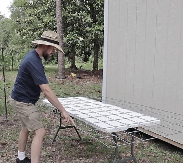 measuring a cattle panel trellis