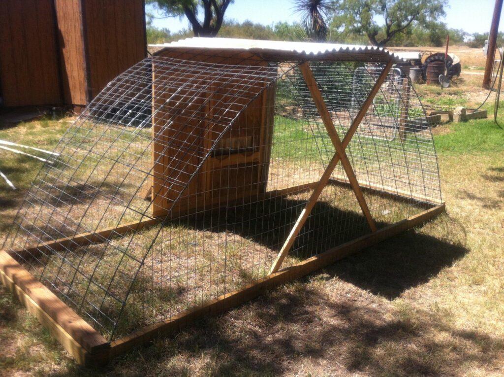 cattle panel chicken tractor